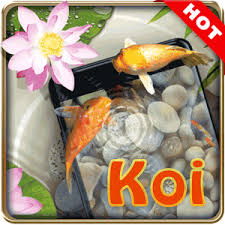 koi live wallpaper version apk free koi pond 3d live wallpaper android apps on play
