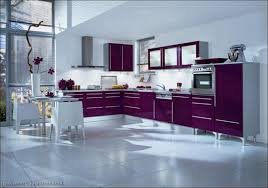kitchen kitchen cabinet ideas top kitchen designs kitchen trend