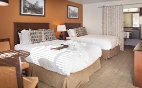 aspen pet friendly hotel aspen lodge molly gibson lodge