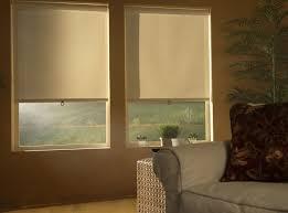 Decorative Roller Window Shades Premium Light Filtering Roller Shades Blindsshopper Com