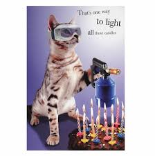 cat birthday cards gangcraft net