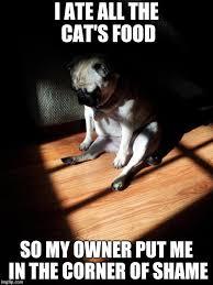 Depressed Pug Meme - depressed pug memes imgflip