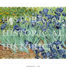 historical vector illustration of a flower bed of irises vincent historical vector illustration of a flower bed of irises vincent van gogh painting