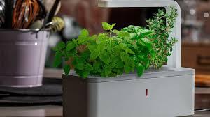 smart herb garden by click u0026 grow by click u0026 grow u2014 kickstarter