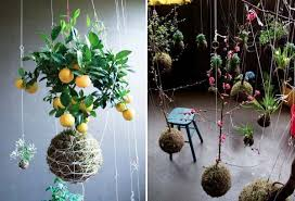hanging garden decorations decoration ideas reviews 2017