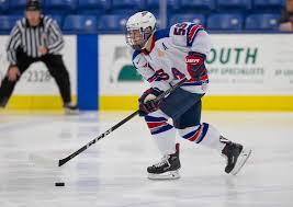 bentley college hockey the terrier hockey fan blog