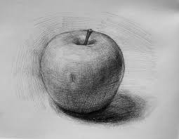 drawn apple realistic pencil and in color drawn apple realistic