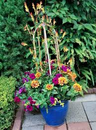 Patio Container Garden Ideas 35 Beautiful Container Gardens Midwest Living