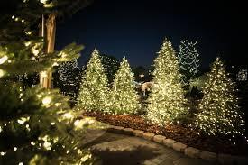 christmas boutique 2016 roger u0027s gardens