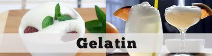 gelatin amazing food made easy