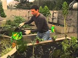 how to start your own vegetable garden from canadian tire youtube