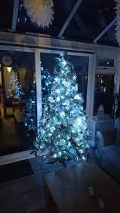 new regent christmas tree range christmas in the conservatory