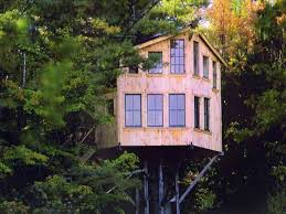 perfect tree house blueprints best house design