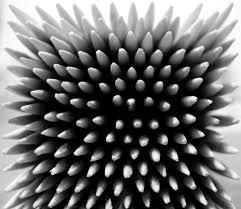 pattern photography pinterest symmetry a powerful compositional tool photokonnexion