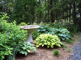 Fake Bushes Garden Design Ideas Shrubs Video And Photos Madlonsbigbear Com