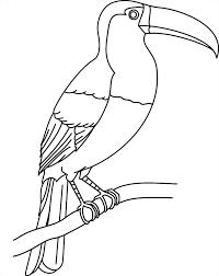 Coloriage à imprimer  un toucan  Turbulus jeux pour enfants
