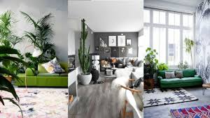 decorate living room with indoor plants greenery living room