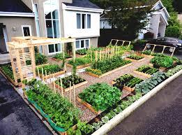 home kitchen garden design vegetable garden design unique iltrezr home garden design plan