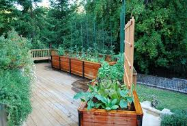 best of edible garden design deck traditional with raised bed
