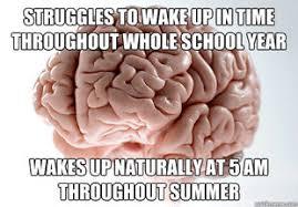 Scumbag Brain Meme - scumbag brain the funny thing is pinterest scumbag brain