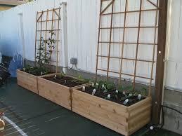 starter garden for family gardenerd