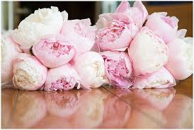 Wedding Flowers Peonies Waconia Wedding Catherine Alex Artemisia Studios