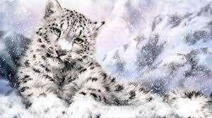 image snow leopard light 96557 jpg animal jam wiki fandom