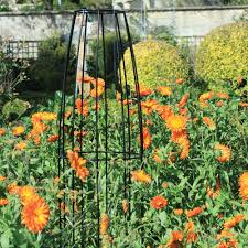 garden plant supports from the gardening website