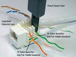 wiring diagram cat 5 wiring diagram wall plate blue jack green