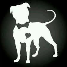 pin by still on ka c a tribute to pitbulls