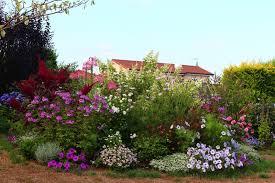 plante vivace soleil parterre de plantes vivaces 15 massif de vivaces plein soleil