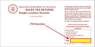 online no tax due system information