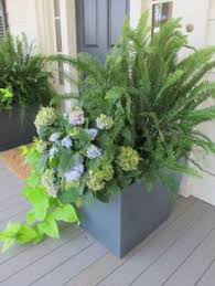 Porch Planter Ideas by Urns Simple U0026 Classic Fern U0026 Ivy Container Garden Entrance