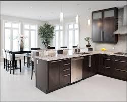 albuquerque kitchen cabinets albuquerque kitchen cabinets elegant this modern kitchen features