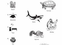 plants animals u0026 the earth worksheets u0026 free printables