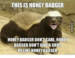 Honeybadger Meme - 25 best memes about honey badger meme honey badger memes