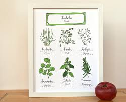 herbs print 11x14 art print modern french kitchen gift for