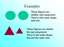 chapter 10 congruent and similar triangles introduction