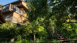 best tree houses the big tree house lodge in upper old place knysna u2014 best price