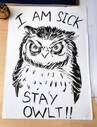 want calmness do what he does u2013 draw owls star2 com