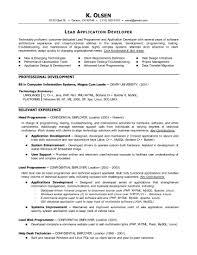 application programmer resume sales programmer lewesmr