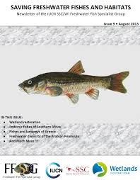 Freshwater Fish Saving Freshwater Fishes And Habitats U0027 Newsletter Iucn