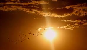 free libra 2017 horoscope predictions sun sign or tula rashi