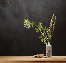 Wabi Sabi Book Wabi Sabi Weekend Stop Fiddling With The Flowers Robyn Griggs