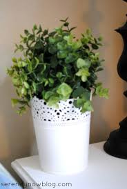 now green in family room confession a plant killer