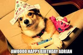 Birthday Dog Meme - top 30 cute happy birthday meme dog birthday wishes quotes