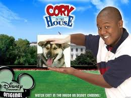 Know Your Meme Dog - cory in the house dog petting photoshops know your meme
