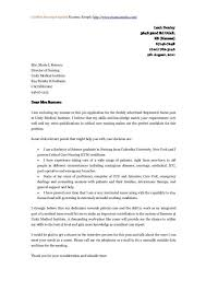 Best 20 Cover Letters Ideas On Pinterest Cover Letter Example by Traffic Assistant Cover Letter