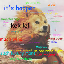 Doge Know Your Meme - majestic doge doge know your meme