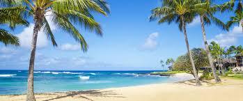 home paradise grooming 4 men jacksonville beach fl